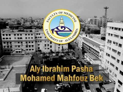 Introduction  to Alexandria University Egypt