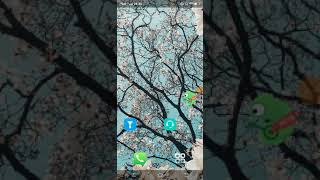 How to check version know your smart phone