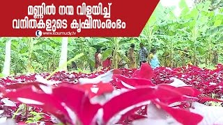 Female Farmers & Their Vast Vegetable Cultivation in Kerala | Haritham Sundaram