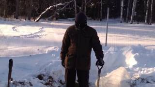 Winter Gardening In Manitoba Canada