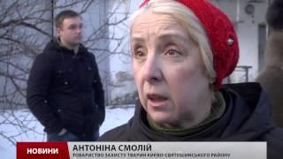 Кличко звільнив директора КП