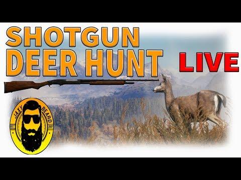 SHOTGUN DEER HUNT In TheHunter Call Of The Wild   Live Stream!