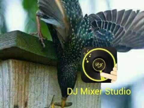 Nagachya Pilyala Dj Abhinav Morshi In The Mix