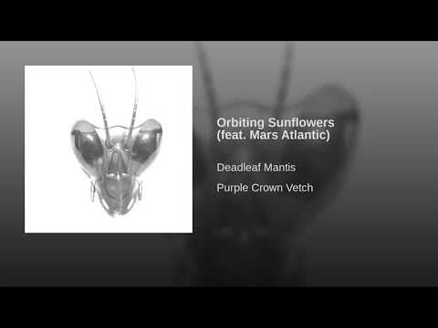 Deadleaf Mantis-Orbiting Sunflowers feat  Mars Atlantic
