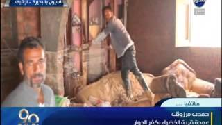 بالفيديو.. عمدة قرية الخضراء بكفر الدوار: 150 ألف فدان محاصيل تالفة بسبب الأمطار