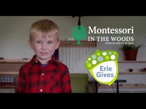 Montessori In The Woods Erie Gives Promo