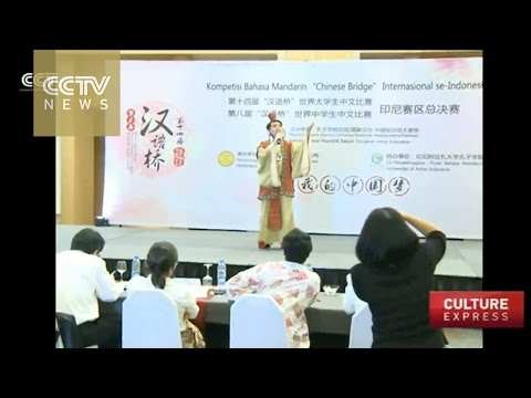 Chinese-language competition wraps up in Indonesia