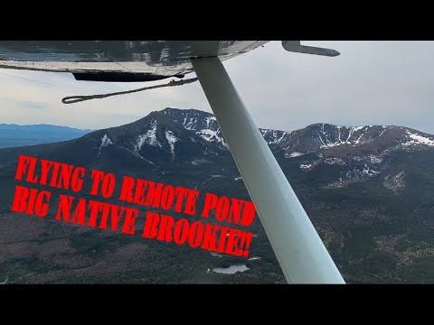Brook Trout Fishing In Maine - Maine Freshwater Fishing -  Exploring Maine In The Cessna 180 #11