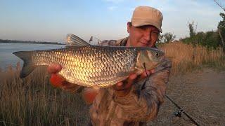 Весенняя Рыбалка на Волге Рыбалка на Закидушки Донку Ловля Голавля на Большой Реке Рыбалка 2021