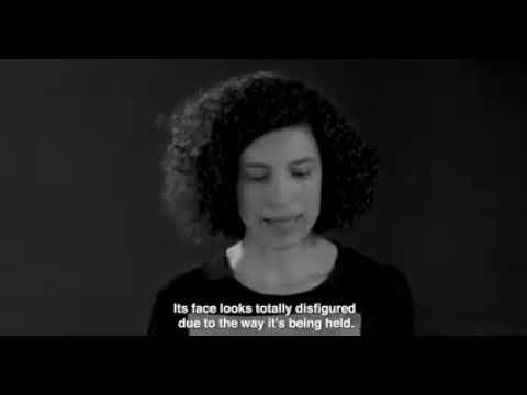 Nueve actrices acusan a Vivotecnia de maltrato animal en un corto