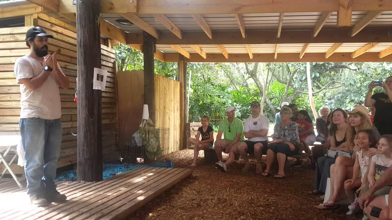 Miami - Safari Adventure Park - YouTube