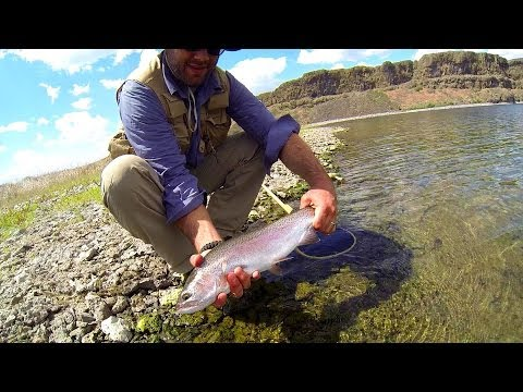 Rainbow Trout Fishing Coffeepot Lake