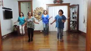 my new life the line dance by john offermans danced by the headlinerz of nj