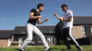 Central Wing Chun - workshops