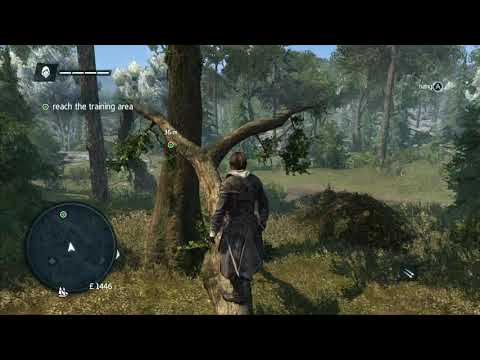 Assassin's Creed Rogue for Switch - Odd Visual Shimmer