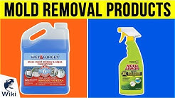 10 Best Mold Removal Products 2019