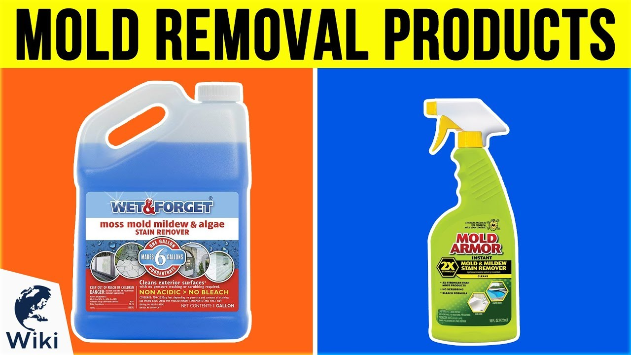 10 Best Mold Removal Products 2019 Youtube