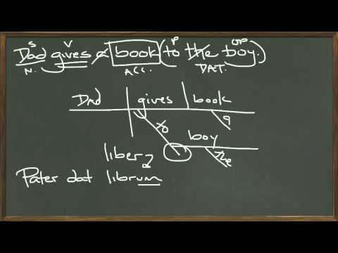 Introduction to the Accusative Case