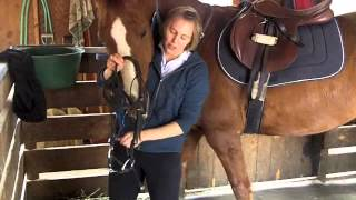 Putting on a Martingale