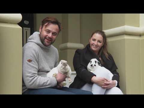 Hoe een konijn als huisdier te houden – Deskundig advies voor huisdieren   S3 Afl 7   Honden aan het spelen