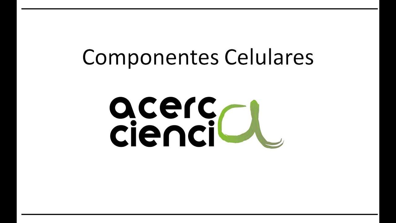 Componentes Celulares Acerca Ciencia