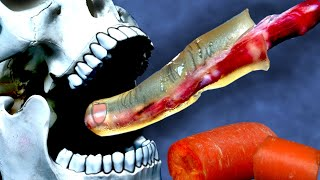 Download Can You Bite Off Your Finger like a Carrot? Mp3 and Videos