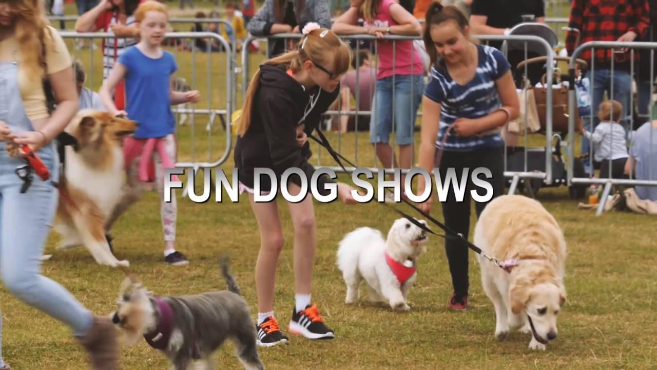 Essex Dog Show Hatfield Peverel  Photos
