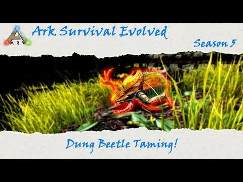 Ark Survival Evolved S5E31: Fully automated farming! Dung Beetle Taming!