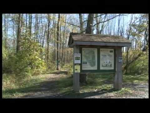 """""""Owasco Lake,""""  Walk in the Park episode 182"""