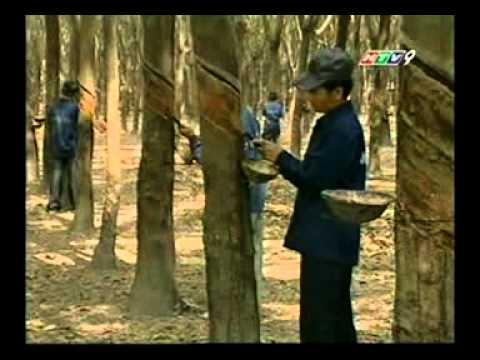 Luat Giang Ho - Tap 07_clip3.avi