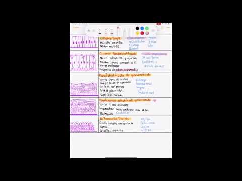 Geneser, Atlas de histologia - 1ra edición - Medicina - Link en la descripción from YouTube · Duration:  2 minutes