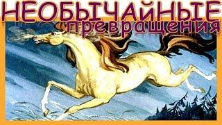 Необычайные превращения. Абхазская народная сказка. Народная сказка. Аудиосказка. Слушать онлайн