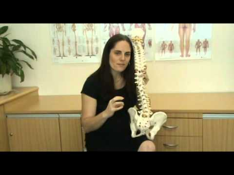Non Specific Lower Back Pain