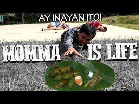 Momma is Life - A Betel Nut True Story (Funny FIlm)