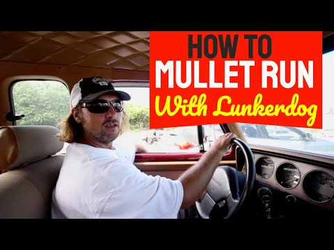 How To Mullet Run with the Lunkerdog