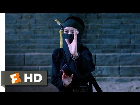 Crouching Tiger, Hidden Dragon 1/8 Movie   The Sword Thief 2000 HD