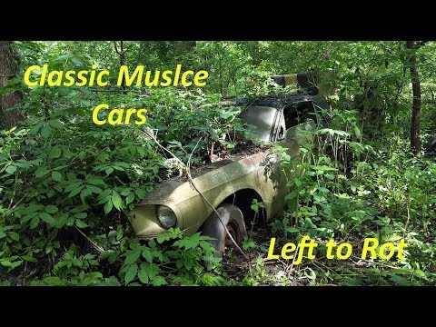 Exploring a Forgotten Muscle Car Graveyard! -- Part 1