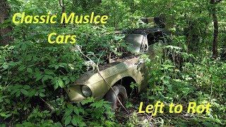 Exploring a Forgotten Muscle Car Graveyard! -- Part 1