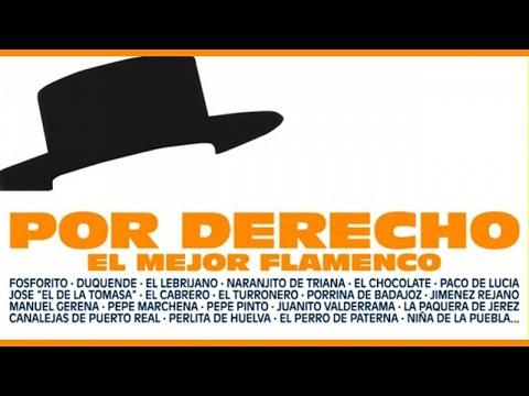 Varios - Por Derecho - El Mejor Flamenco