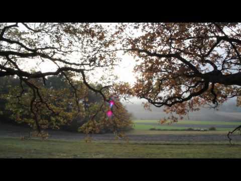 Dramadigs Der 2. November (offizielles Filmgut)