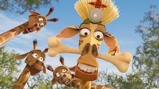 DreamWorks Madagascar | Melman Witch Doctor | Madagascar: Escape 2 Africa | Kids Movies |Kids Videos
