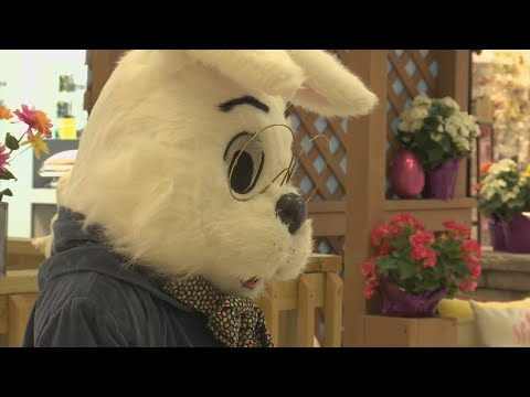 Easter Bunny Is Back At The Cherryvale Mall