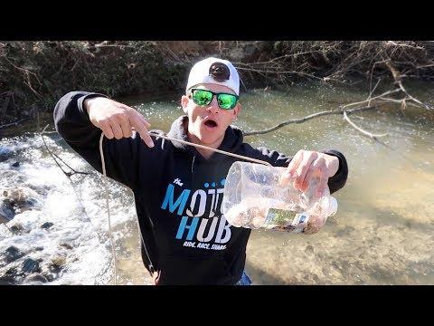 Plastic Bottle CRAWFISH Trap DIY (Does It Work?)