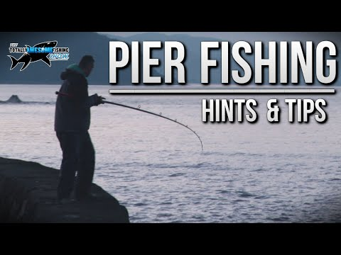 Fishing from a Pier - Rigs, Tips & Tactics | TAFishing