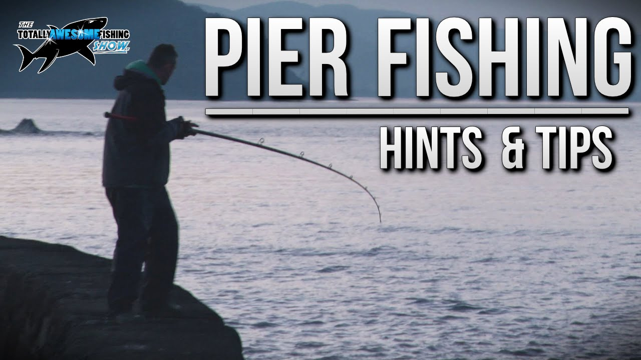 fishing from a pier rigs tips tactics tafishing doovi