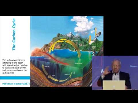 Petroleum Geology: The carbon cycle, organic matter and maturation
