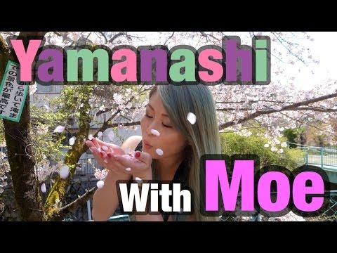 Explore Japan with Moe | Yamanashi Prefecture