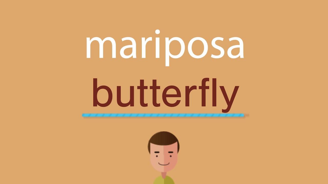 Cómo Se Dice Mariposa En Inglés Youtube