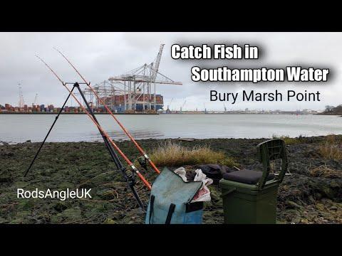 Catch Fish In Southampton Water: BURY MARSH
