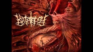 Katalepsy - Cold Flesh Citadel